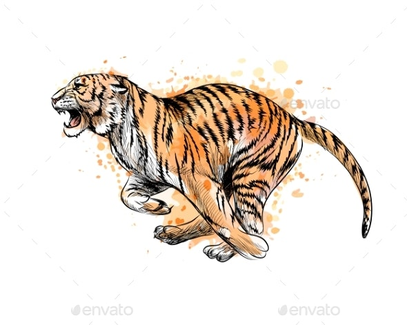 Tiger Running From a Splash of Watercolor - Animals Characters