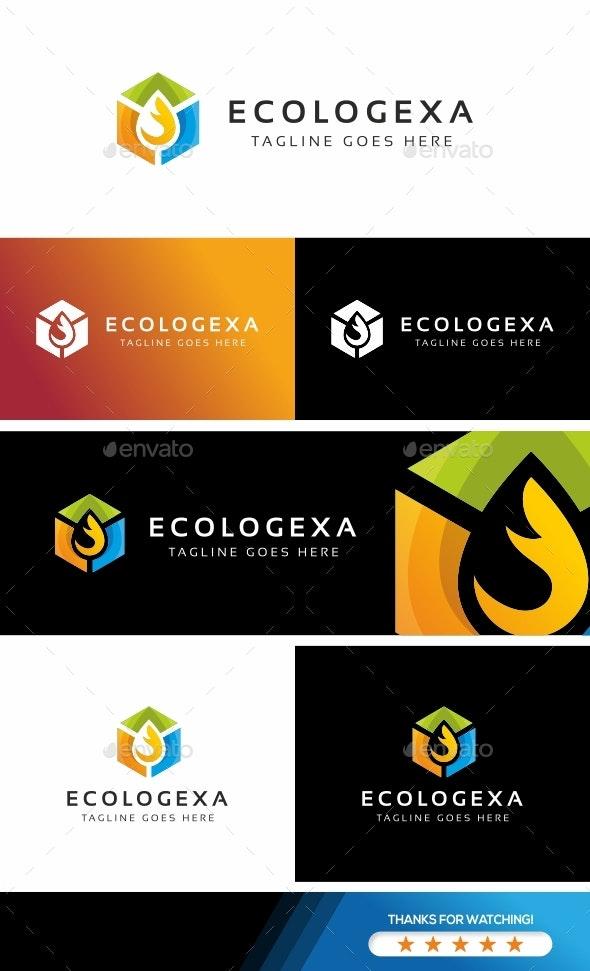Hexa Leaf Logo - Abstract Logo Templates