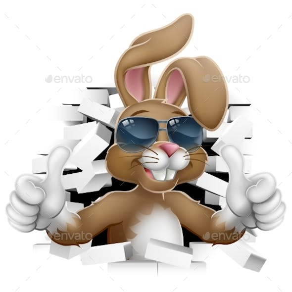 Easter Bunny Rabbit Sunglasses Thumbs Up