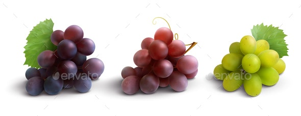 Grapes Realistic Composition - Food Objects