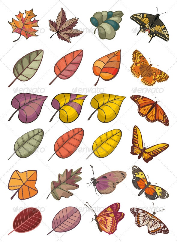 Leaves And Butterflies - Seasons Nature