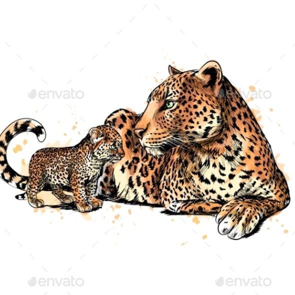 Portrait of a Leopard From a Splash of Watercolor