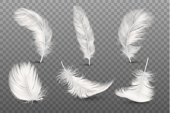 Vector Realistic Feathers - Miscellaneous Vectors