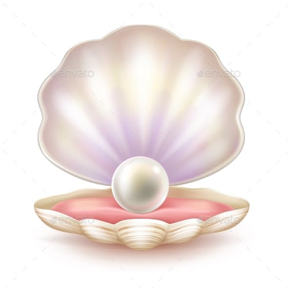 Precious Pearl in Opened Shell Realistic Vector