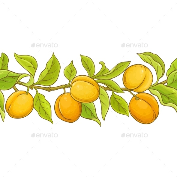Apricot Seamless Pattern - Food Objects