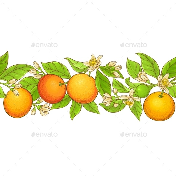 Grapefruit Branch Vector Pattern - Food Objects