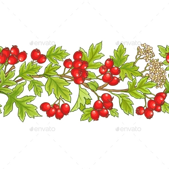 Hawthorn Branch Vector Pattern - Food Objects