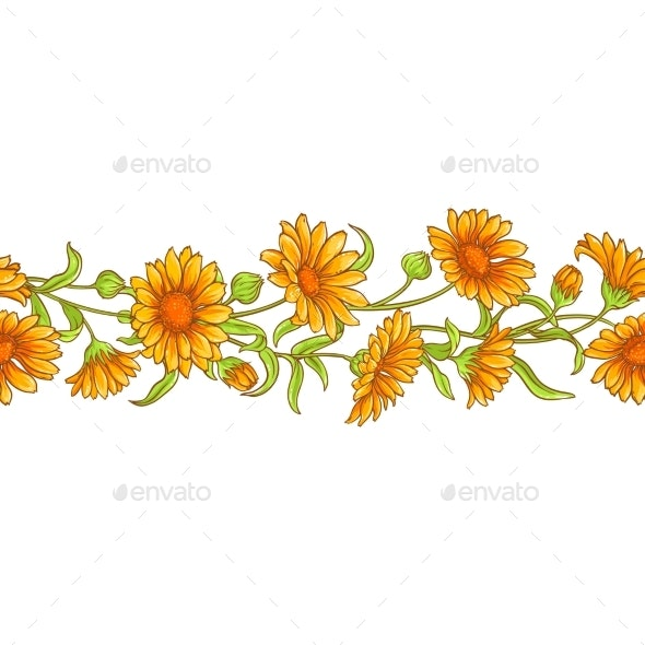 Calendula  Flower Vector Pattern - Food Objects