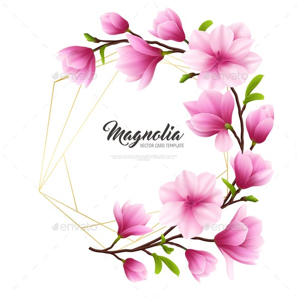 Magnolia Graphics Designs Templates From Graphicriver Page 3