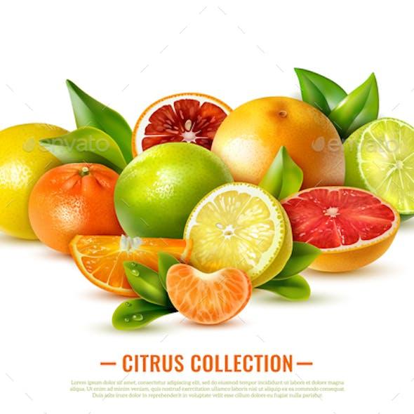 Realistic Citrus Fruit Illustration