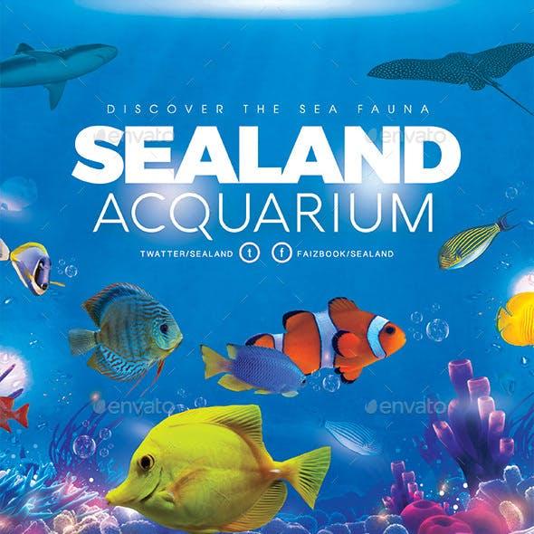 Aquarium Sea Land Flyer