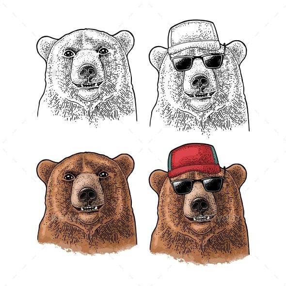 Bear Head - Animals Characters