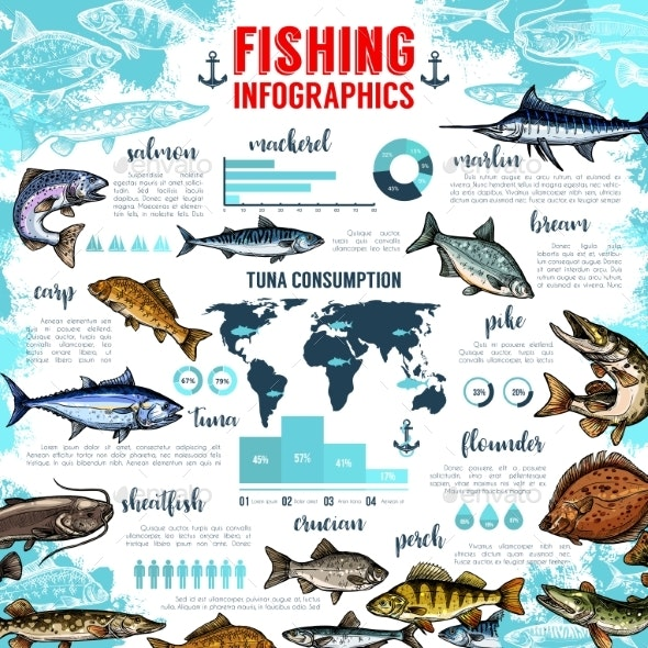 Vector Infographics for Fishing and Fish Seafood - Sports/Activity Conceptual