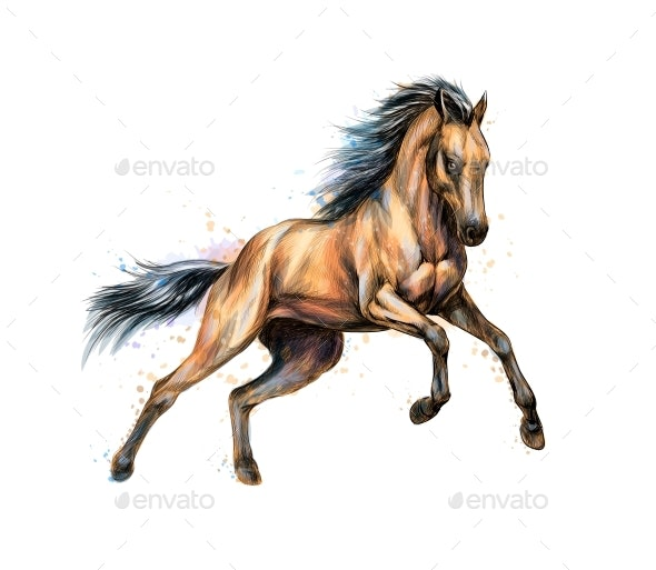 Horse Run Gallops - Animals Characters