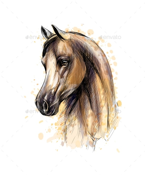 Horse Head Portrait From Splash of Watercolors - Animals Characters