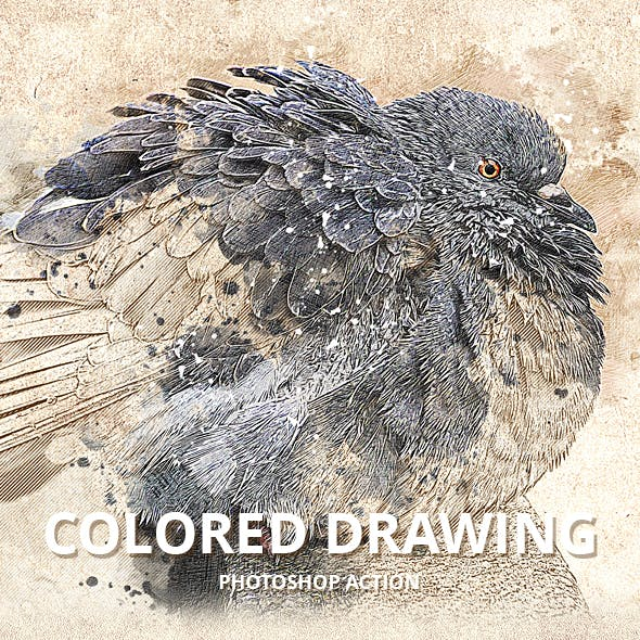 Colored Drawing Photoshop Action