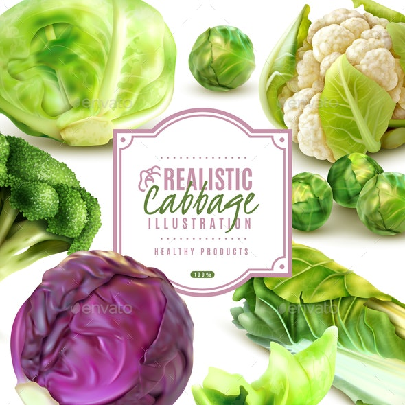 Realistic Cabbage Frame - Food Objects