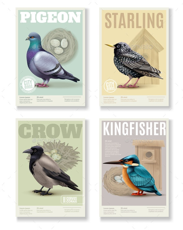 Realistic Bird Banners Set - Animals Characters