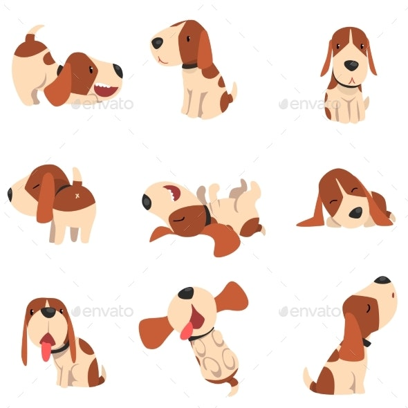 Beagle Dog in Various Poses - Animals Characters