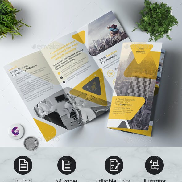 Clean Trifold Brochure