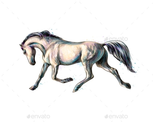 Horse Run Gallop From Splash of Watercolors - Animals Characters