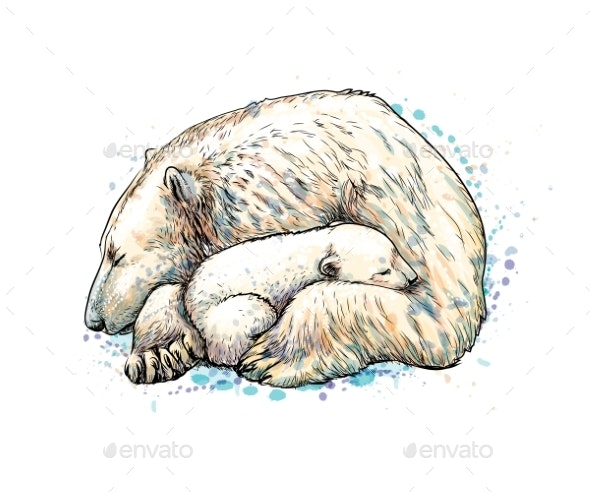 Polar Bear with Cub From a Splash of Watercolor - Animals Characters
