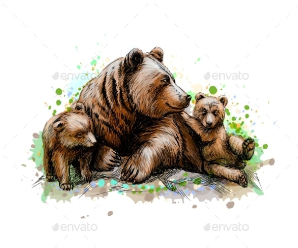 Brown Mother Bear with Her Cubs - Animals Characters
