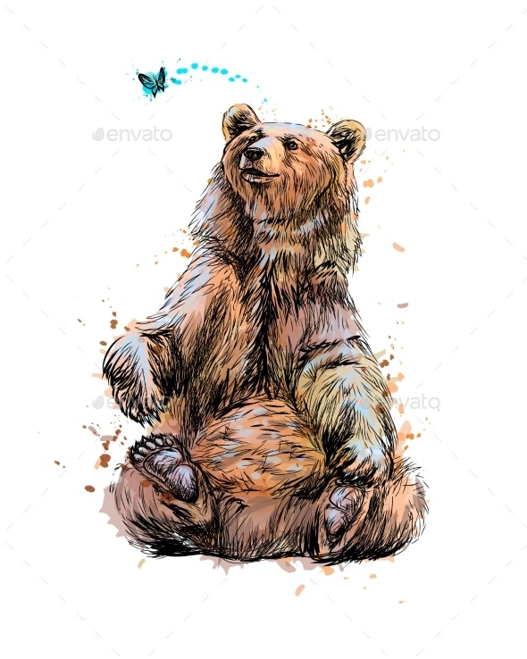 Brown Bear Sitting and Playing with Butterfly - Animals Characters