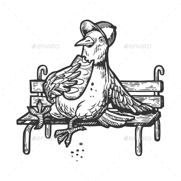 Dove Pigeon Eat Bread on Bench Engraving Vector