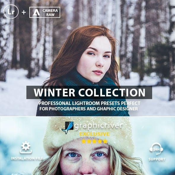 Pro Winter Lightroom & Photoshop Presets
