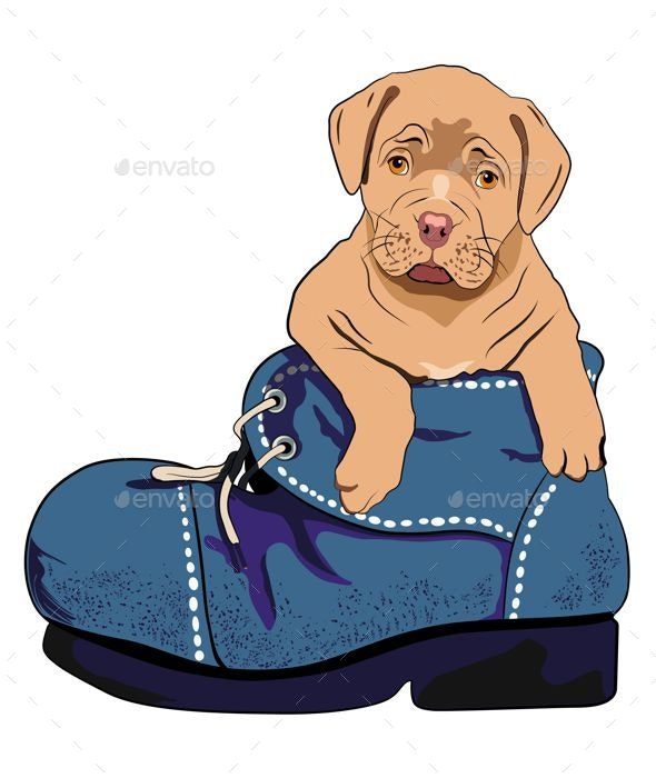 Dog in a Boot - Animals Characters