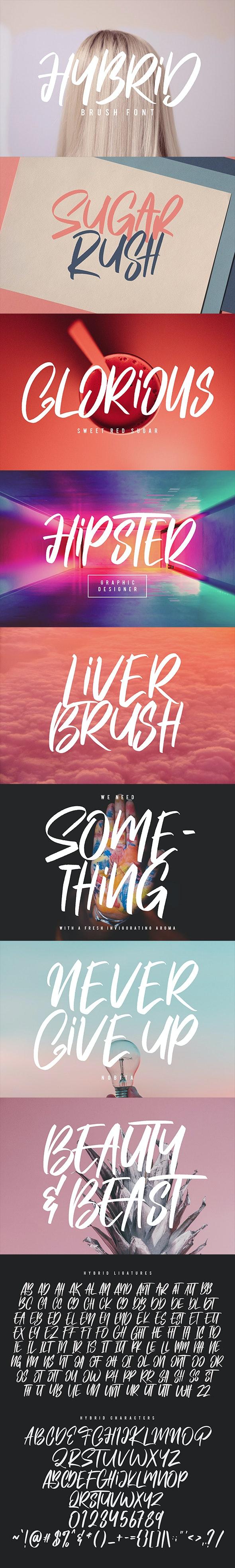 Hybrid Brush Font - Calligraphy Script