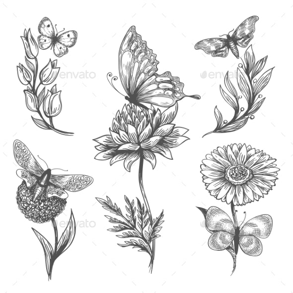 Butterfly and Flowers Doodle Sketch Icons - Flowers & Plants Nature