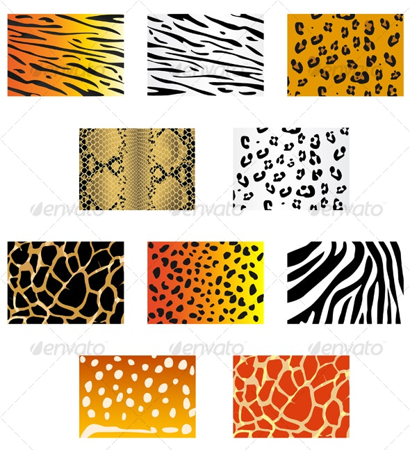 Set of animal fur and skin patterns - Backgrounds Decorative