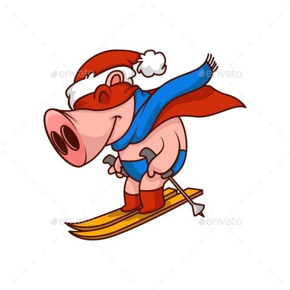 Funny Pig Superhero Riding on Skis. Humanized