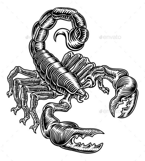 Scorpion Scorpio Zodiac Sign Woodcut Design - Miscellaneous Vectors