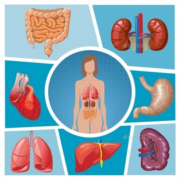 Cartoon Human Body Parts Composition - Health/Medicine Conceptual