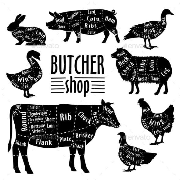 Animals Meat Cut