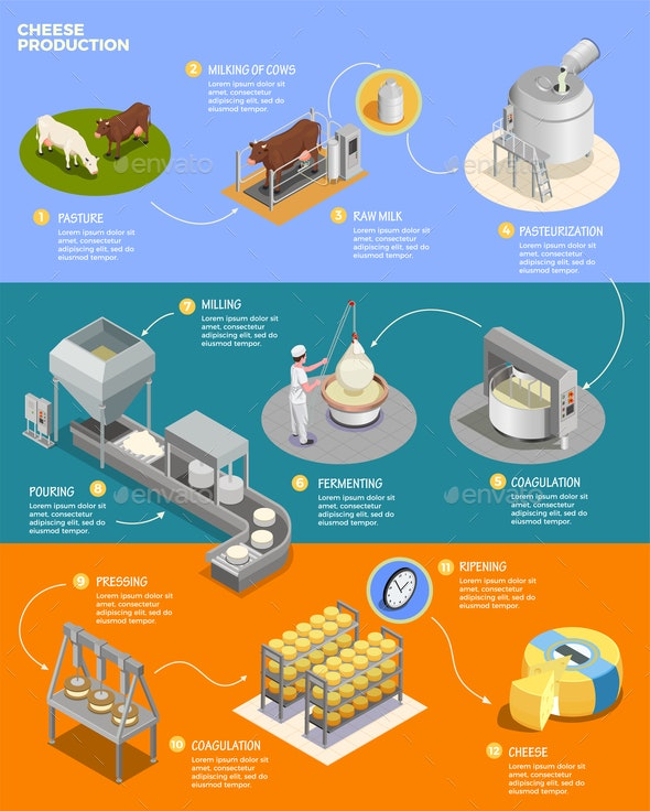 Cheese Production Isometric Infographics - Business Conceptual