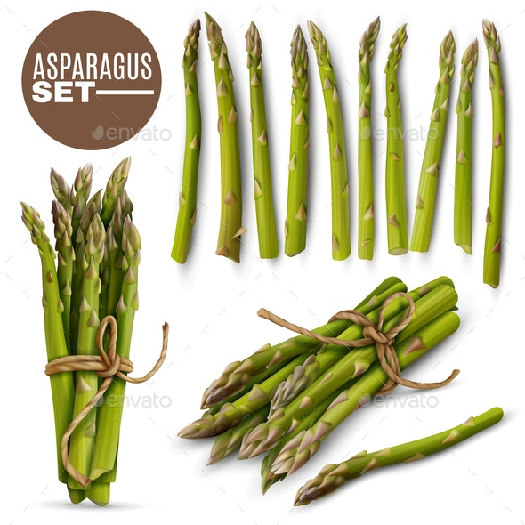 Asparagus Realistic  Set - Food Objects