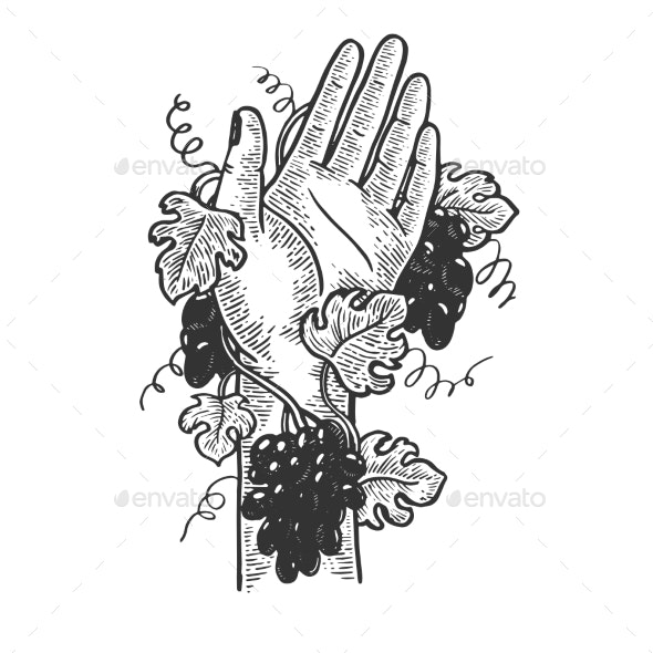 Hand Braided with Grapevine Engraving Vector - Miscellaneous Vectors