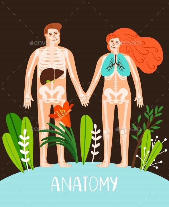 People Anatomy Poster - Miscellaneous Vectors
