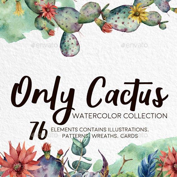 Only Cactus. Watercolor Clip Art