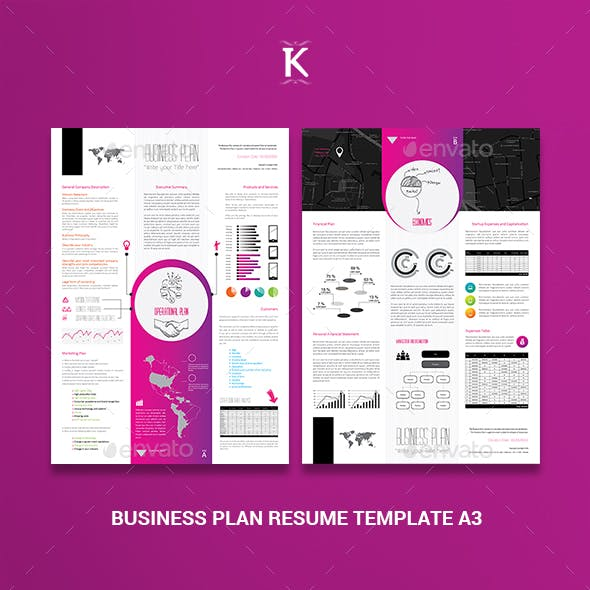 Business Plan Resume Template A3