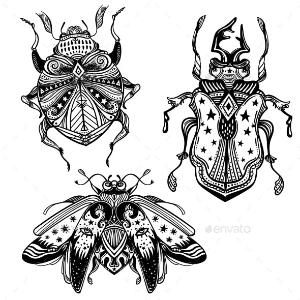 Magic Beetles and Bugs Set