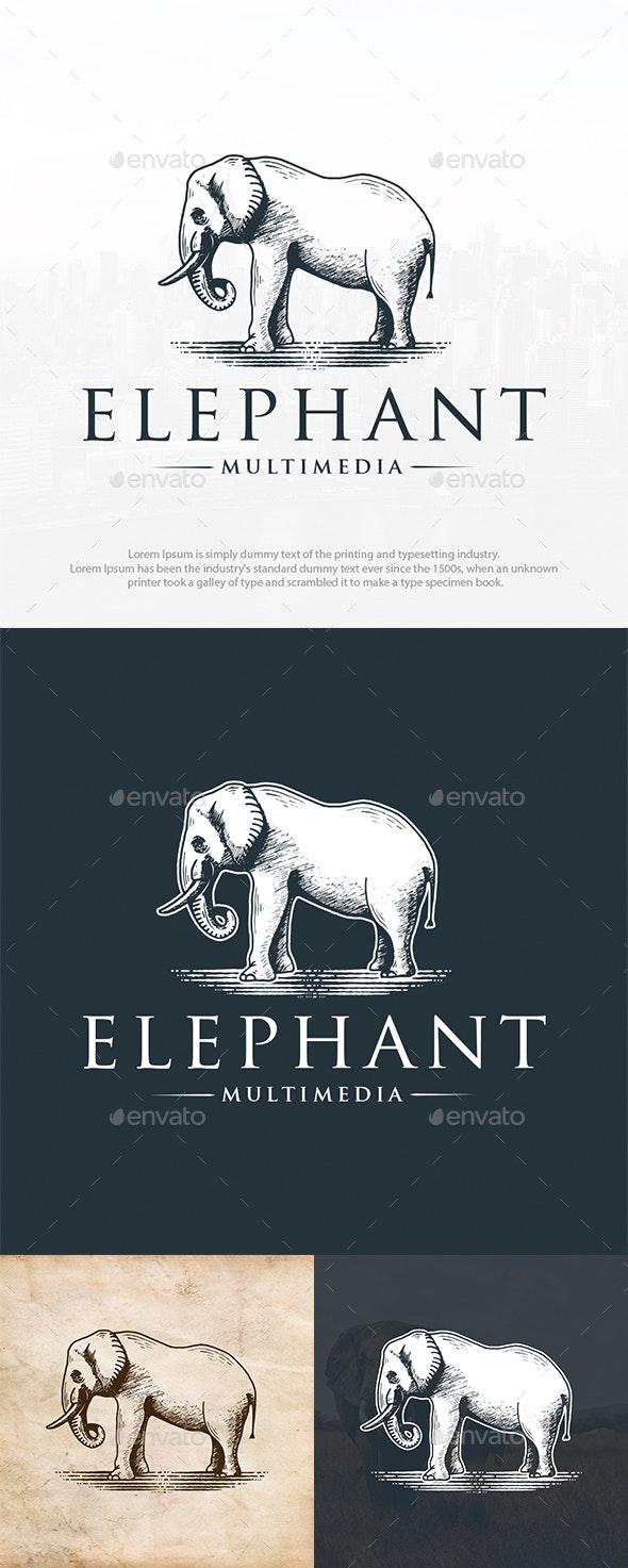 Wild Elephant Logo Template - Animals Logo Templates