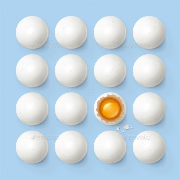 Set of Eggs with Yolk and Shell