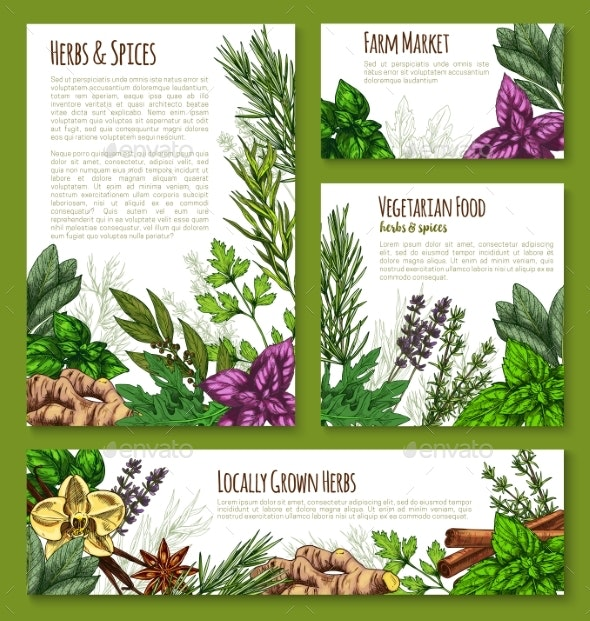 Herb, Spice Banner Template - Food Objects