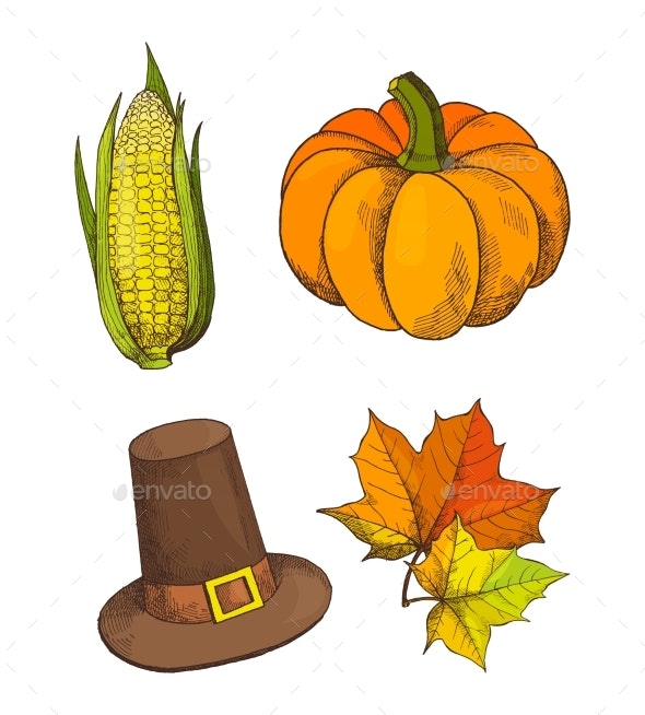 Pumpkin Vegetable and Hat Isolated Set Vector - Miscellaneous Vectors
