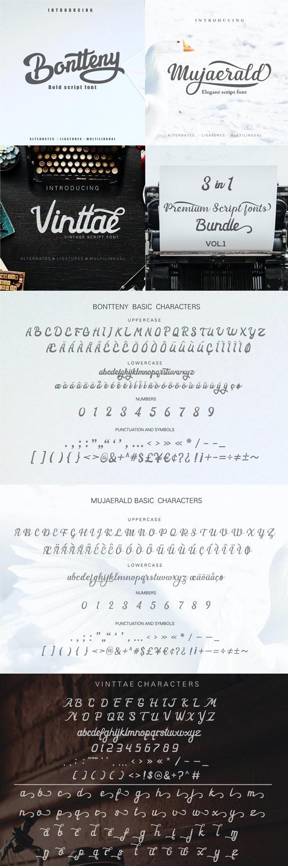 3 in 1 Script fonts bundle - Script Fonts